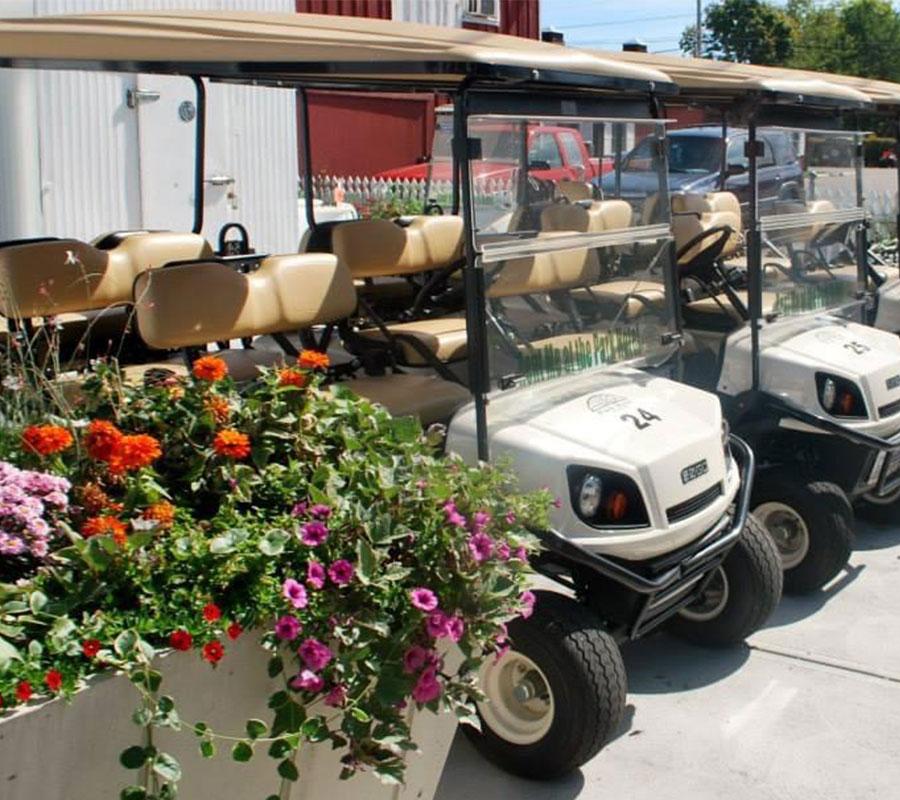 Put-in-Bay park hotel golf carts